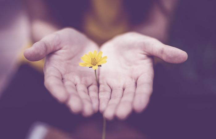 Как развивать любящую доброту и делиться счастьем с другими людьми